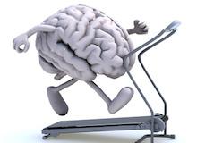human brain on a running machine © fabioberti.it - Fotolia.com