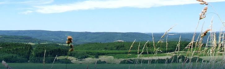 Hunsrück Marathon Panorama